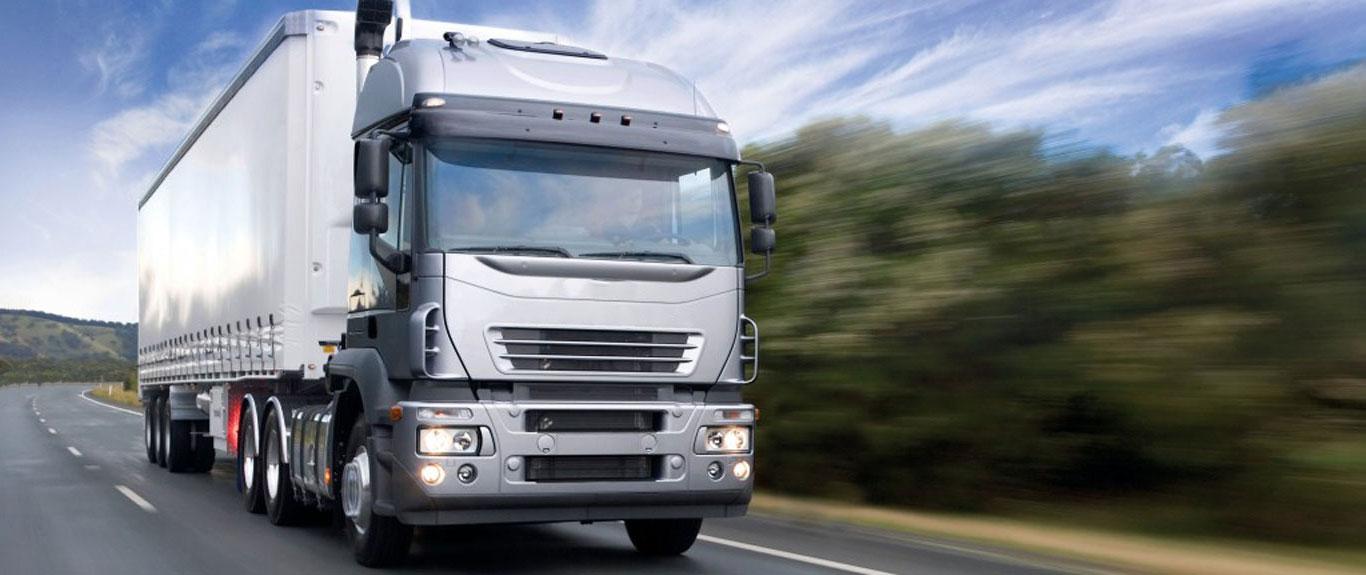Mina Shipping white truck road freight